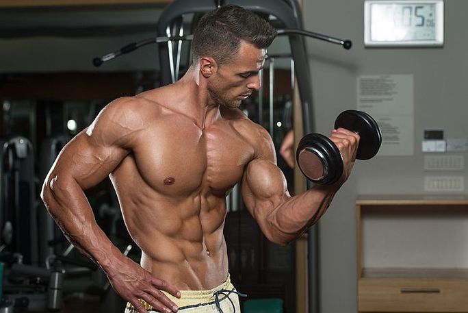 Tips on Building Muscle Any Time of the Year