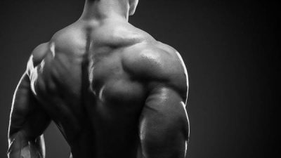 preview-full-muscularback